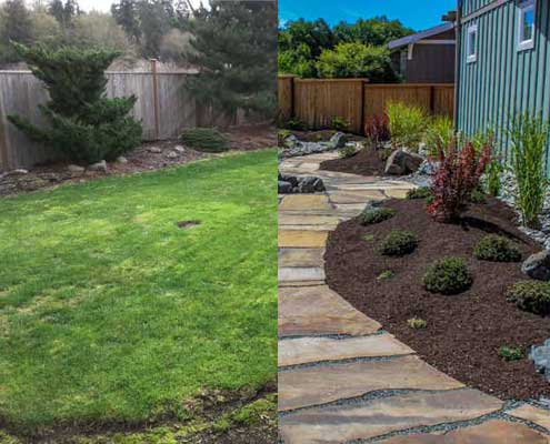 Before & After Landscape